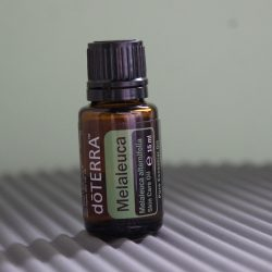 Melaleuca Tea Tree DoTerra
